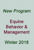 New equine program