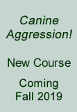 Canine aggression course